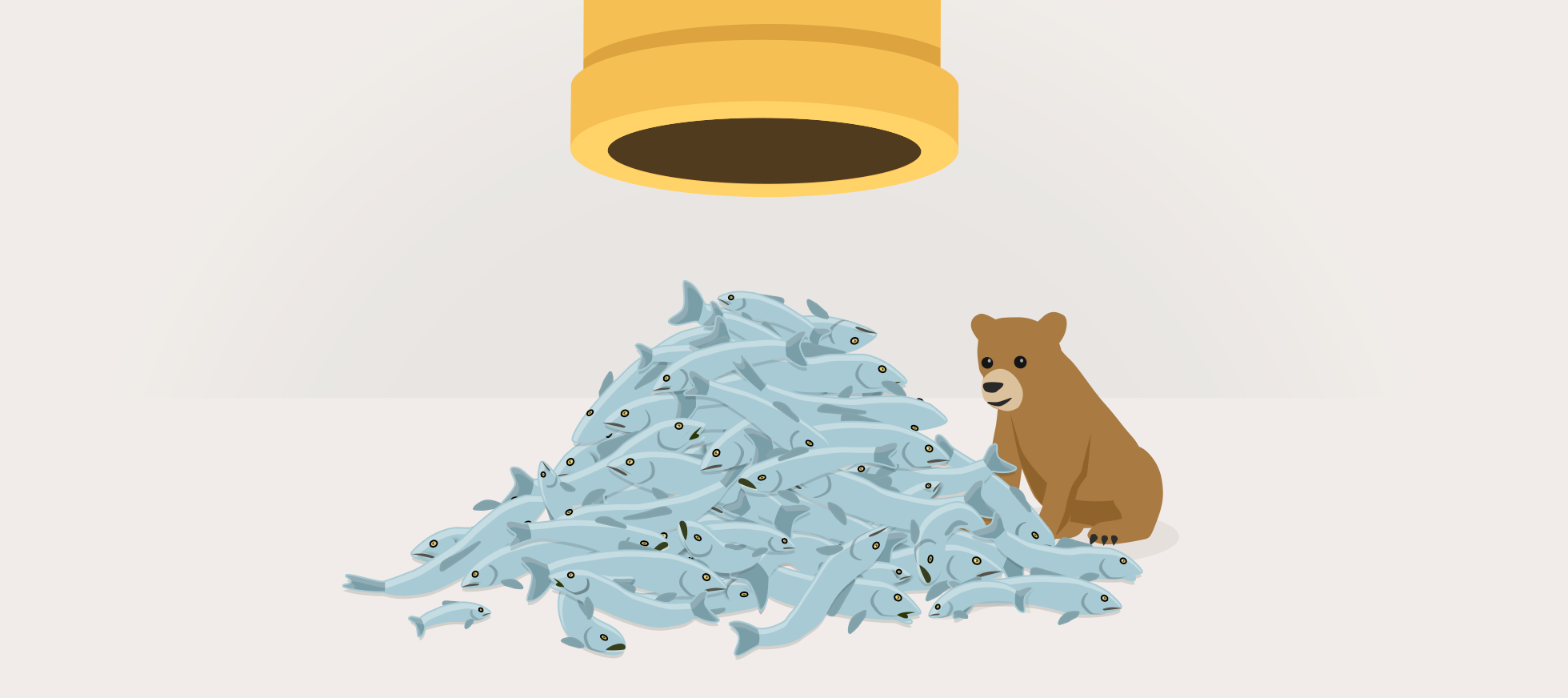 Operation TunnelPhish - No Bears Were Harmed in This Blog Post